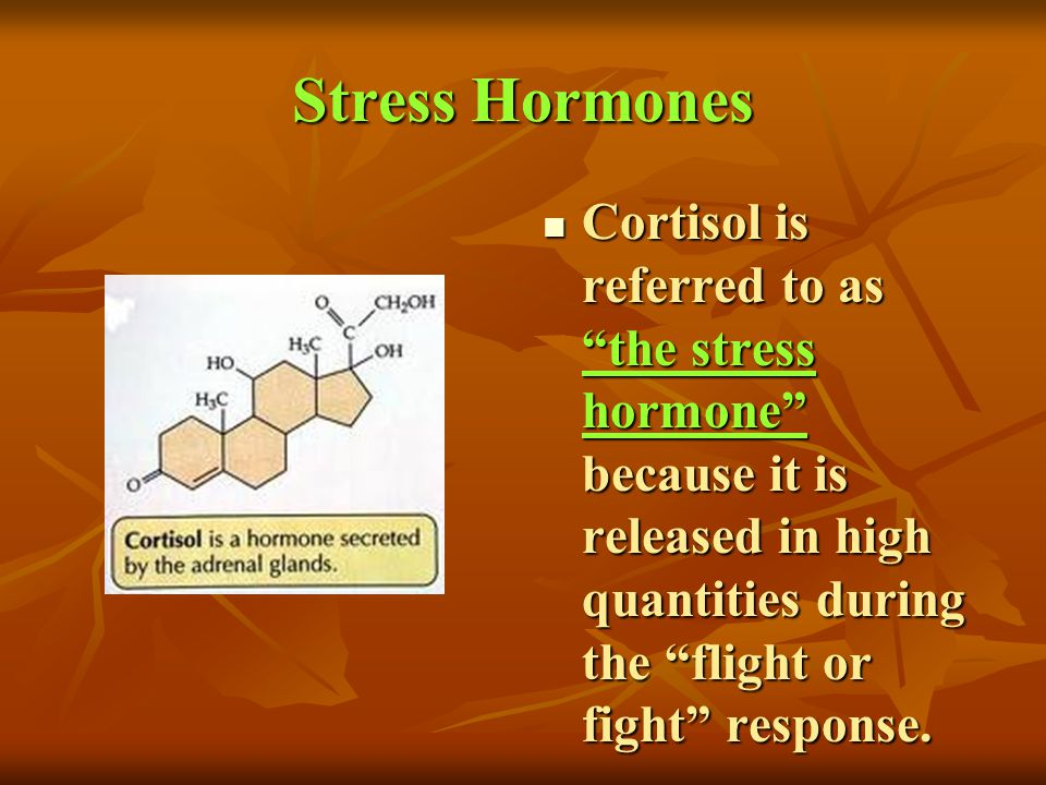 Stress Hormones Cortisol is referred to as the stress hormone because it is released in high quantities during the flight or fight response.