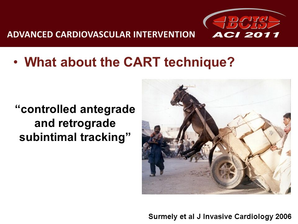 controlled antegrade and retrograde subintimal tracking