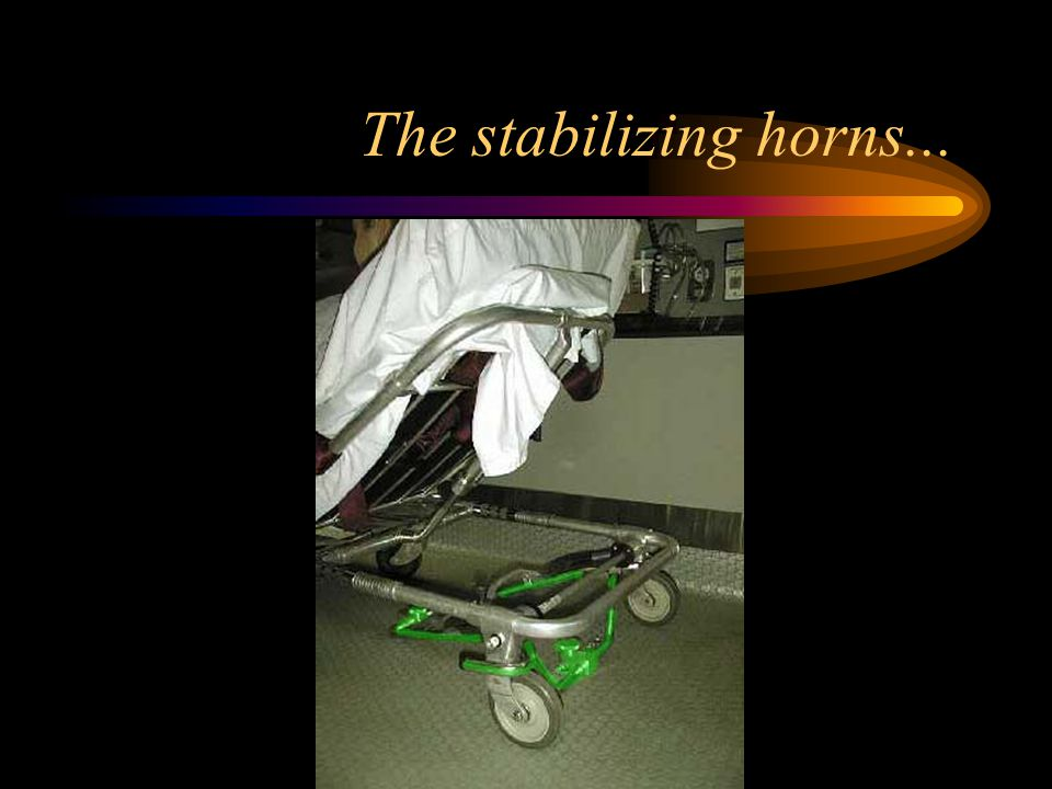 The stabilizing horns...