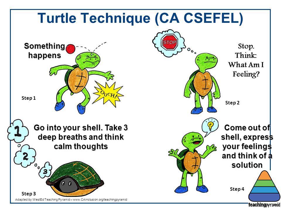 Turtle Technique (CA CSEFEL)