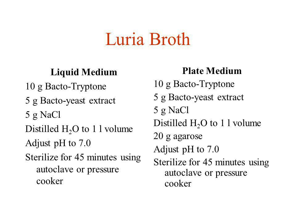 Luria Broth Liquid Medium 10 g Bacto-Tryptone 5 g Bacto-yeast extract
