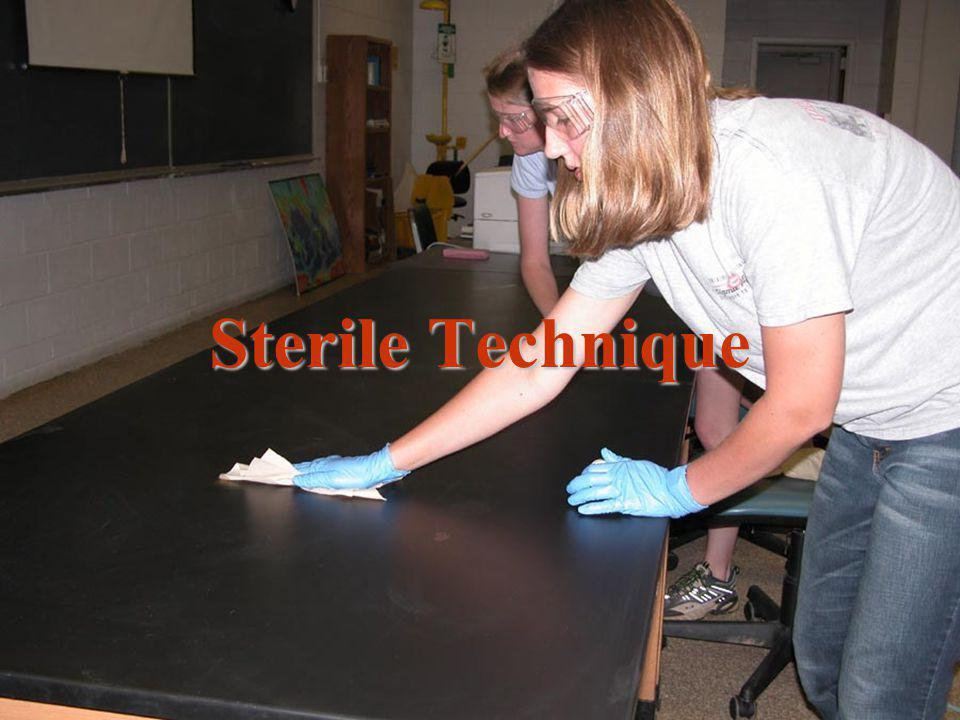 Sterile Technique