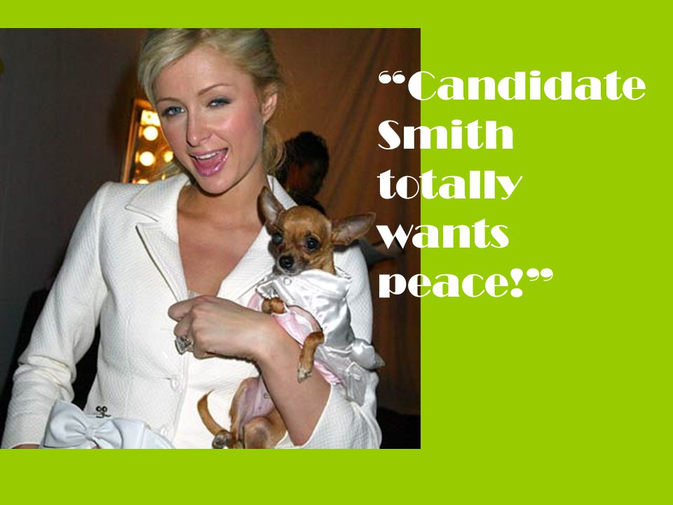 Candidate Smith totally wants peace!