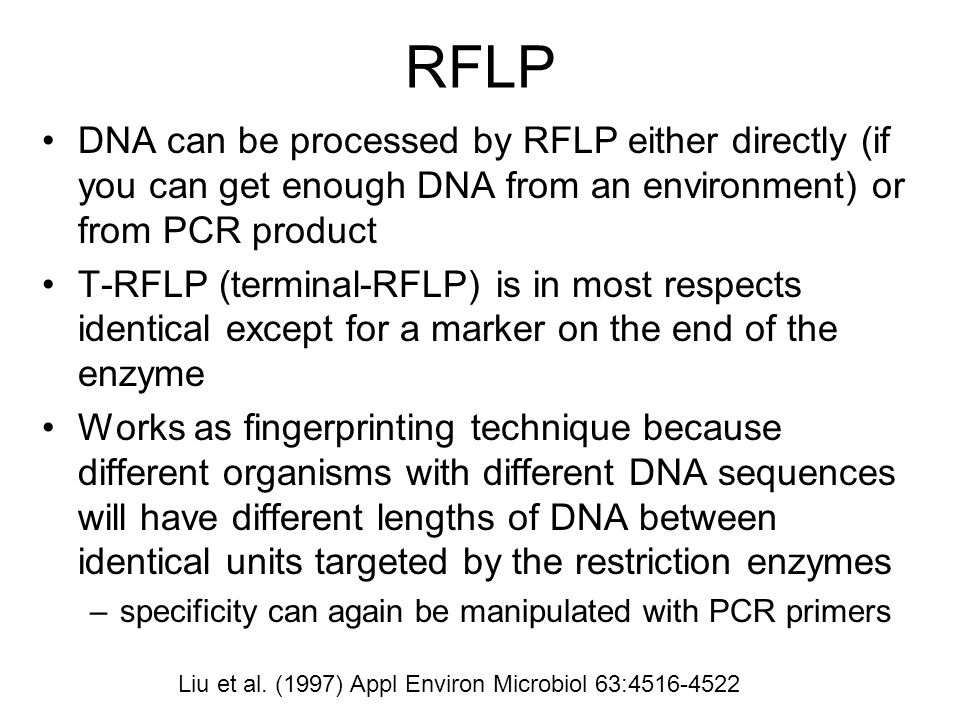 RFLP DNA can be processed by RFLP either directly (if you can get enough DNA from an environment) or from PCR product.