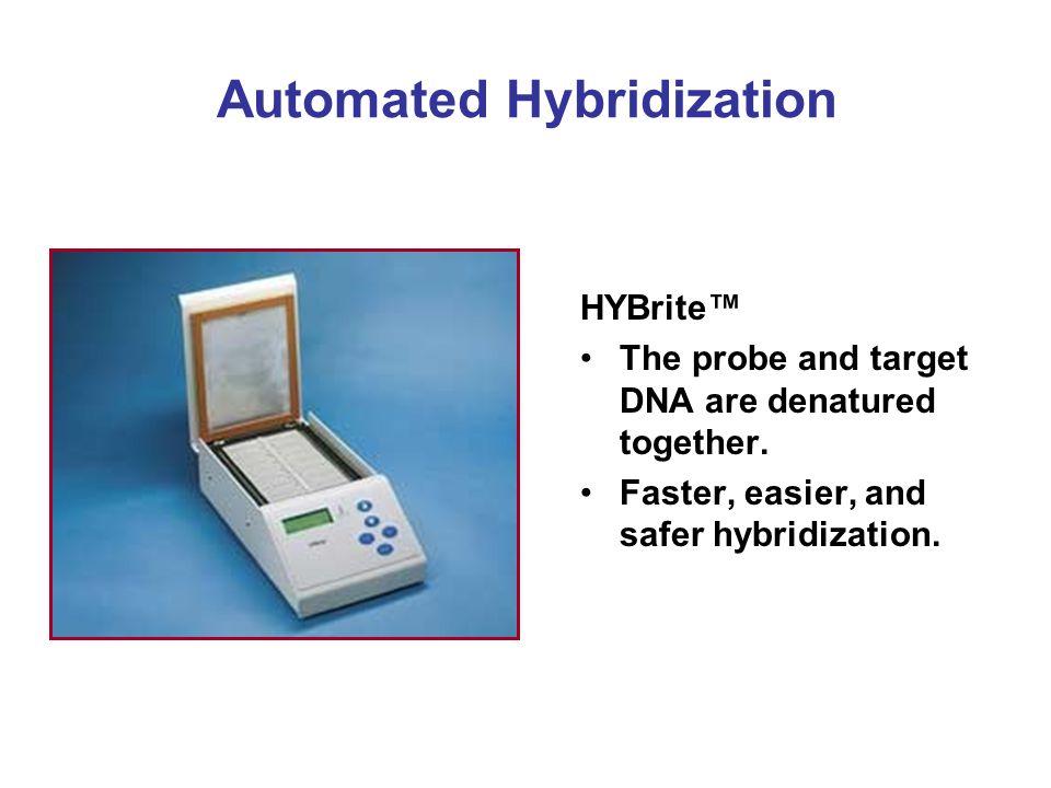 Automated Hybridization