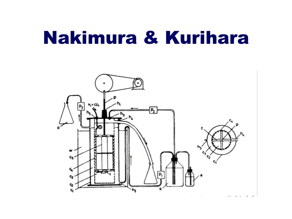 Nakimura & Kurihara