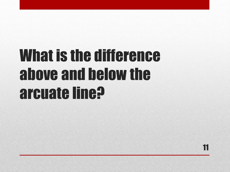 What is the difference above and below the arcuate line