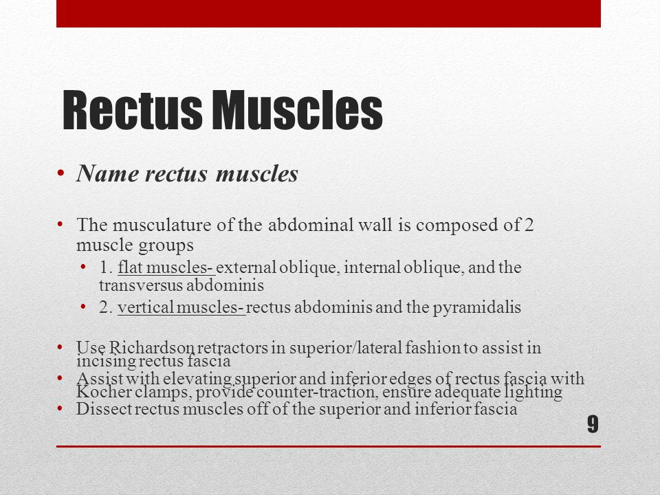 Rectus Muscles Name rectus muscles