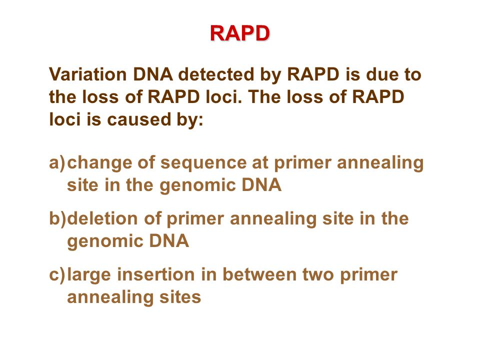 RAPD Variation DNA detected by RAPD is due to the loss of RAPD loci. The loss of RAPD loci is caused by: