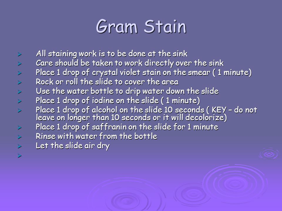 Gram Stain All staining work is to be done at the sink