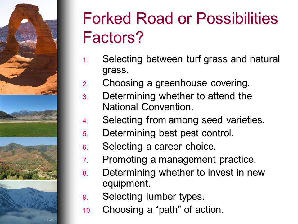 Forked Road or Possibilities Factors