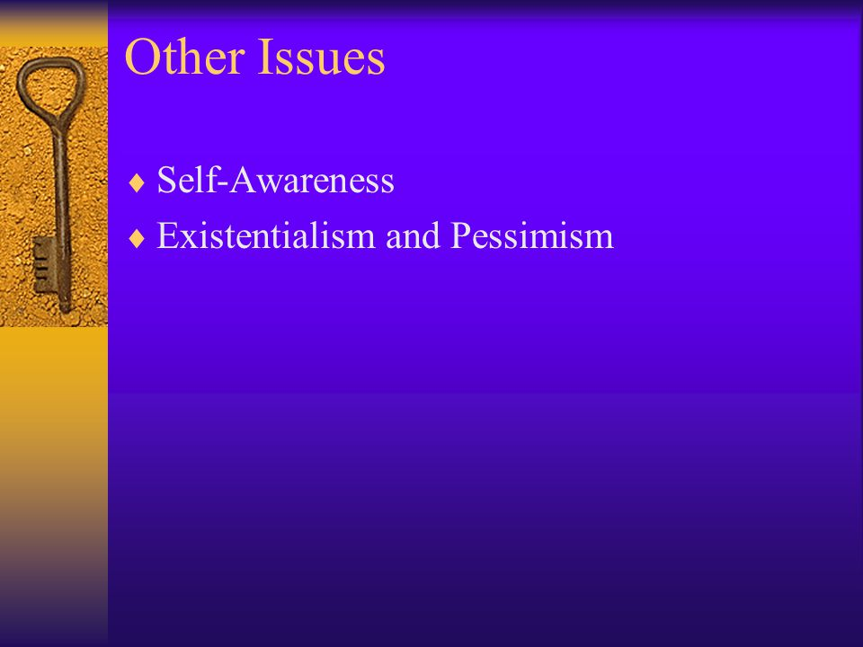 Other Issues Self-Awareness Existentialism and Pessimism