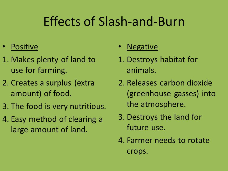 Effects of Slash-and-Burn