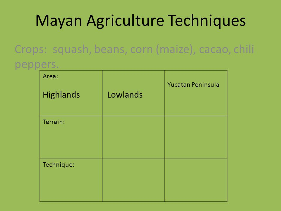 Mayan Agriculture Techniques