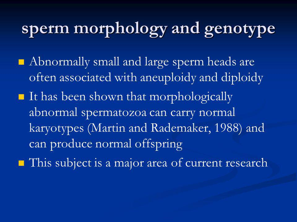 sperm morphology and genotype