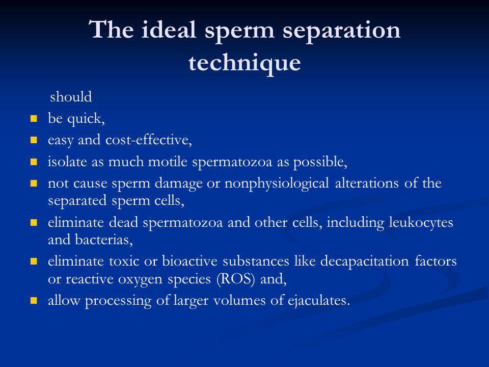 The ideal sperm separation technique