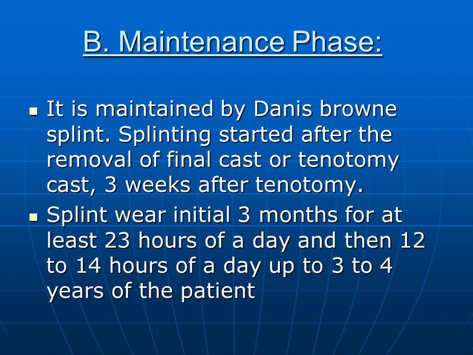B. Maintenance Phase: