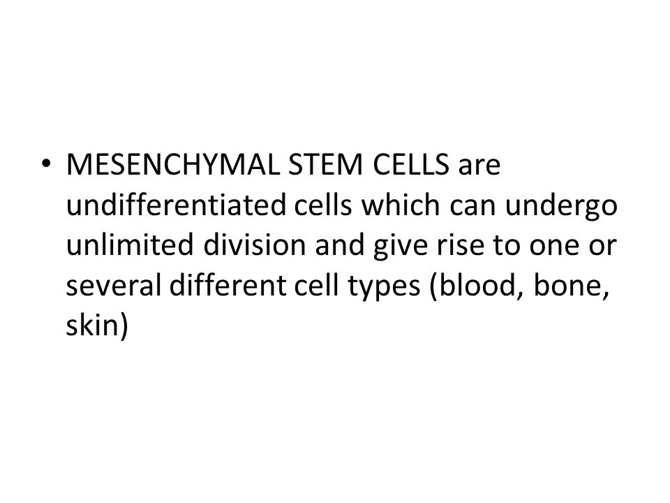 MESENCHYMAL STEM CELLS are undifferentiated cells which can undergo unlimited division and give rise to one or several different cell types (blood, bone, skin)