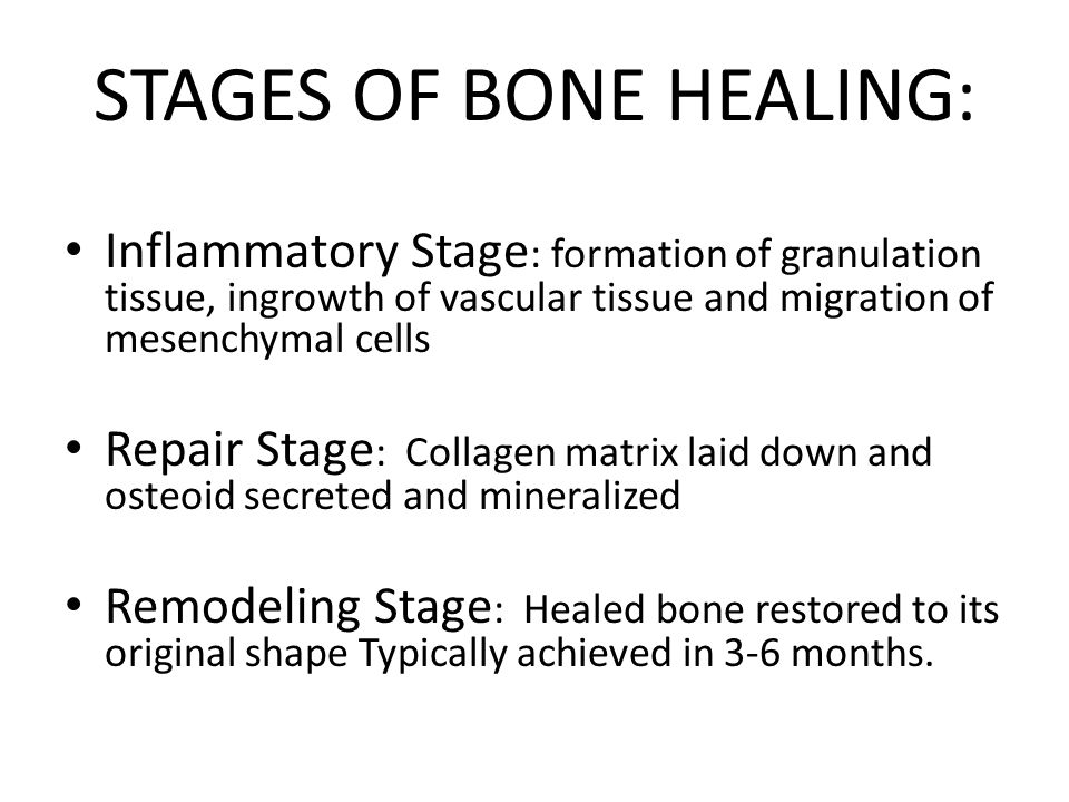 STAGES OF BONE HEALING:
