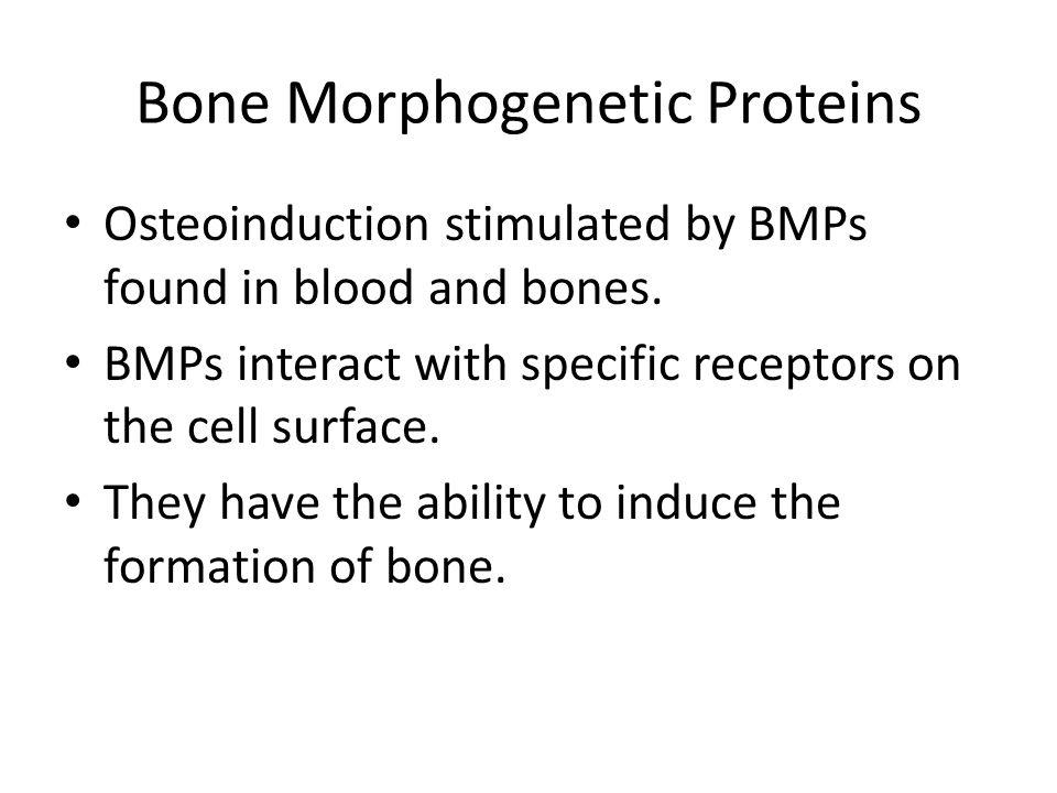 Bone Morphogenetic Proteins