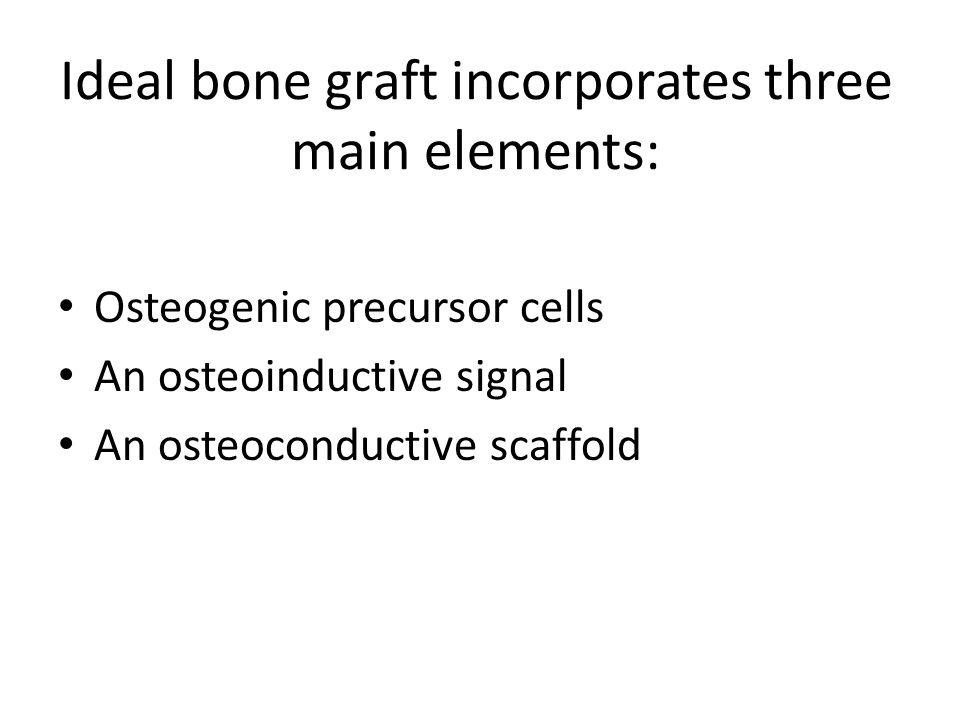 Ideal bone graft incorporates three main elements: