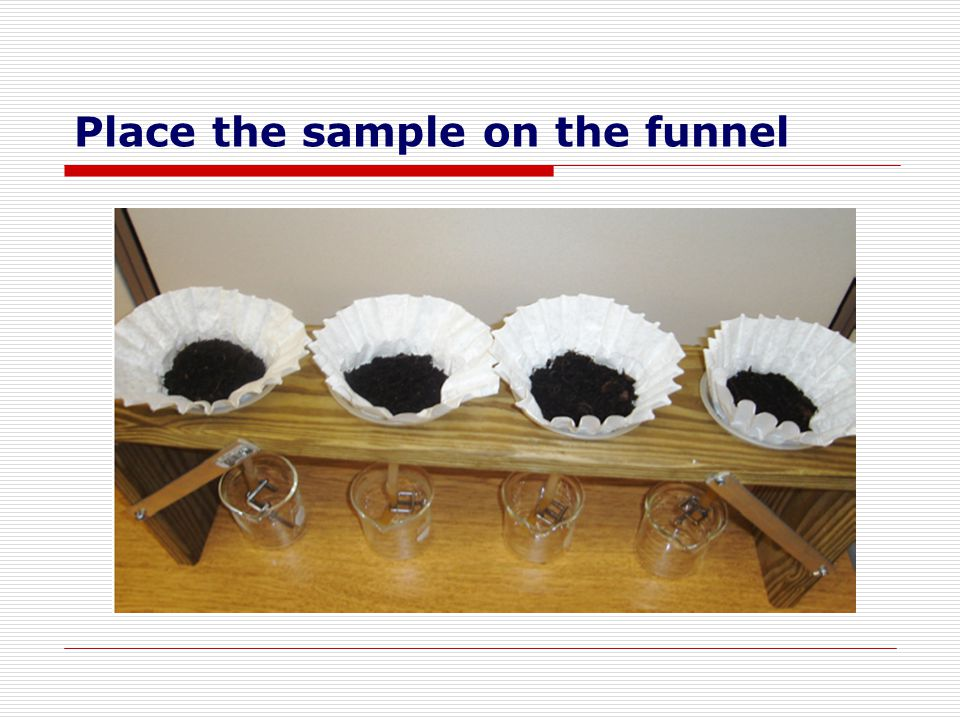 Place the sample on the funnel