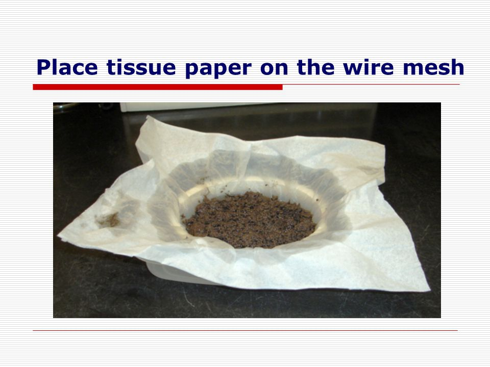 Place tissue paper on the wire mesh