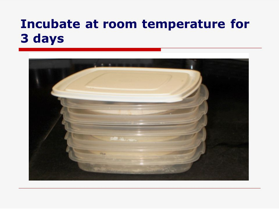 Incubate at room temperature for 3 days