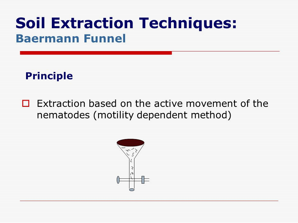 Soil Extraction Techniques: Baermann Funnel