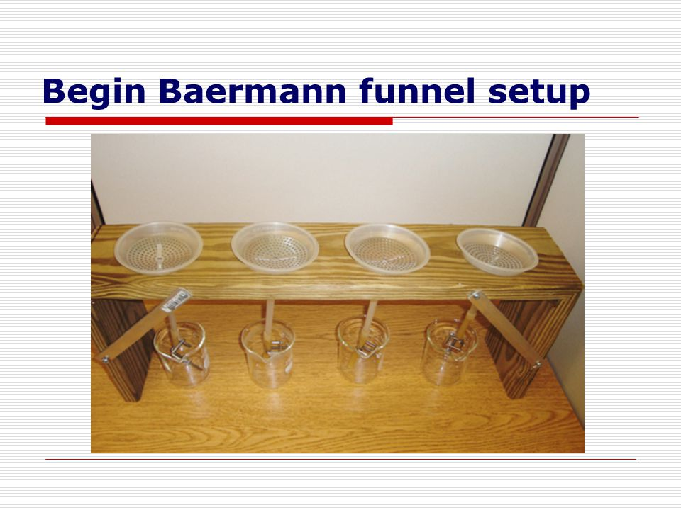Begin Baermann funnel setup