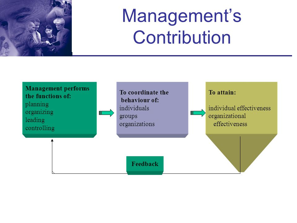 Management's Contribution