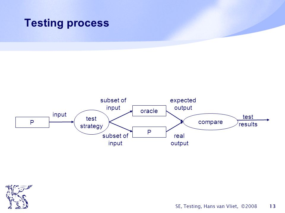 Testing process subset of input expected output oracle input test