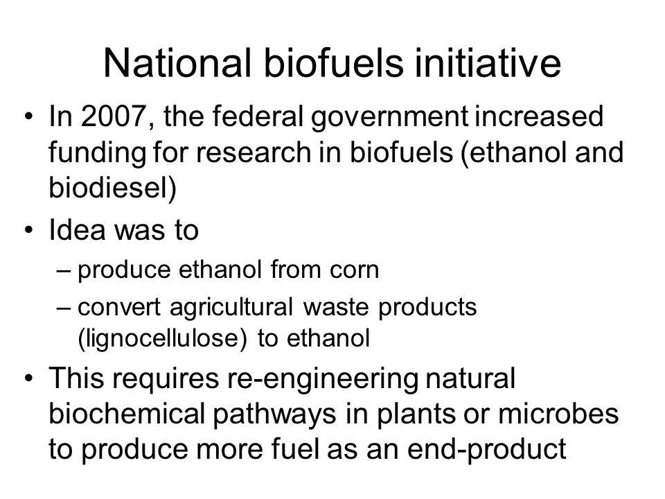 National biofuels initiative