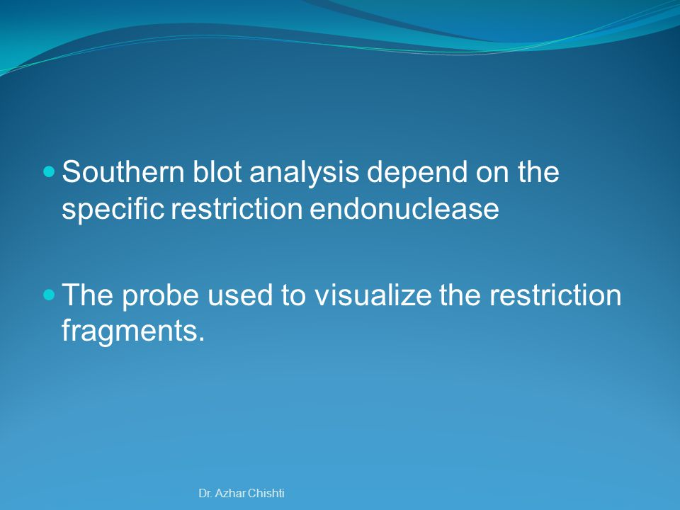 Southern blot analysis depend on the specific restriction endonuclease