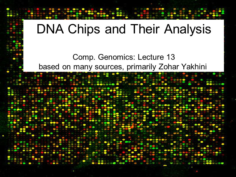 DNA Chips and Their Analysis Comp
