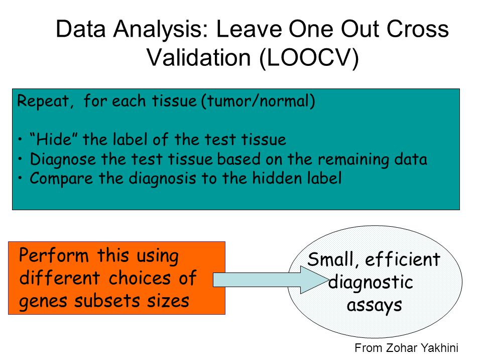 Data Analysis: Leave One Out Cross Validation (LOOCV)