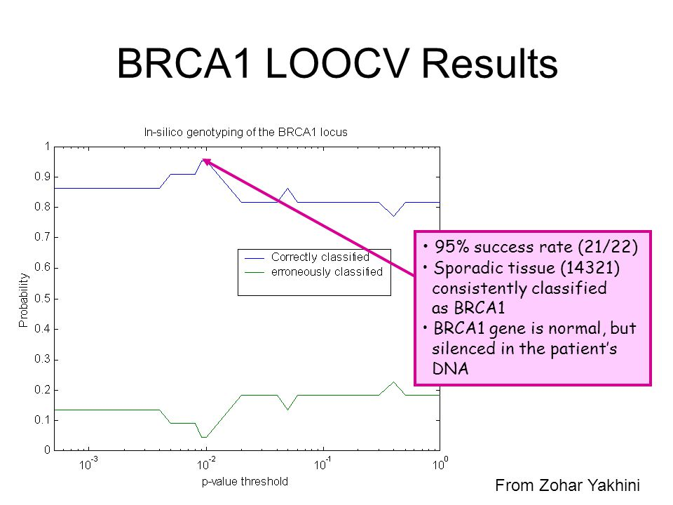 BRCA1 LOOCV Results 95% success rate (21/22)