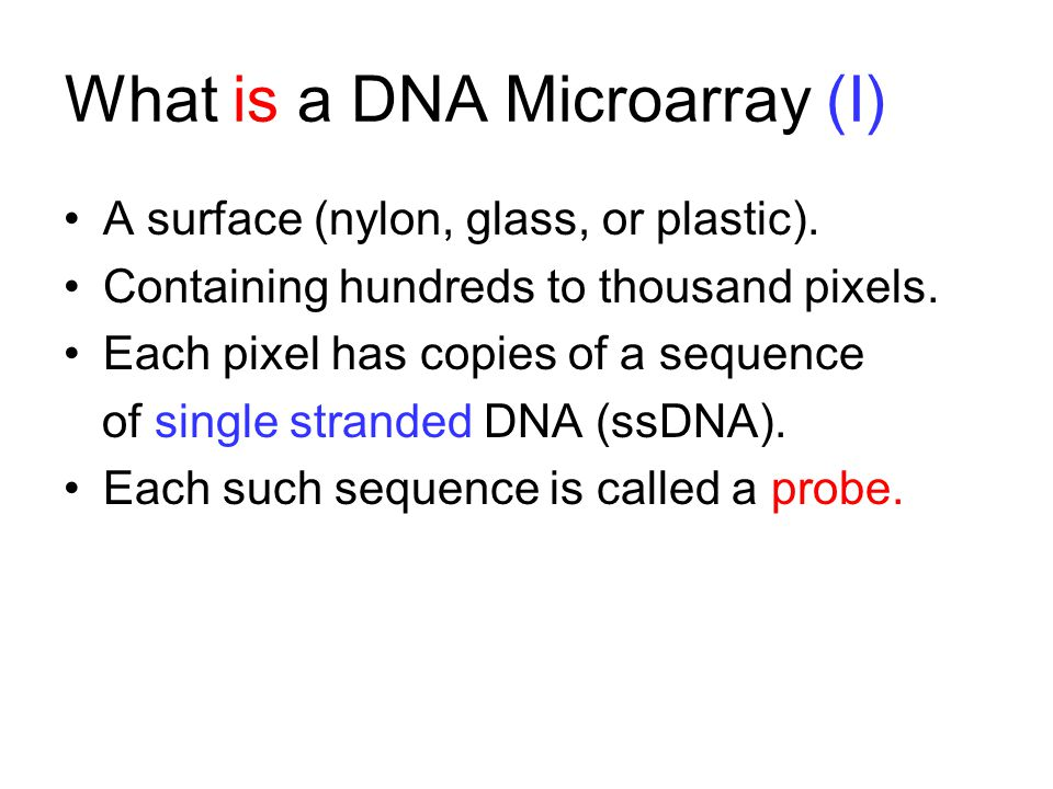 What is a DNA Microarray (I)