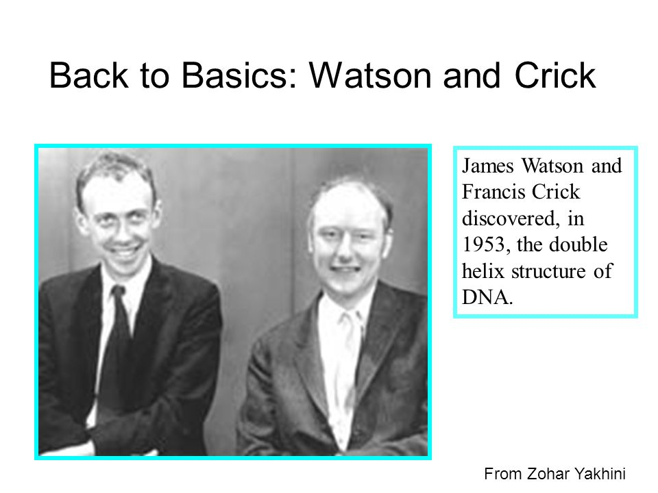 Back to Basics: Watson and Crick