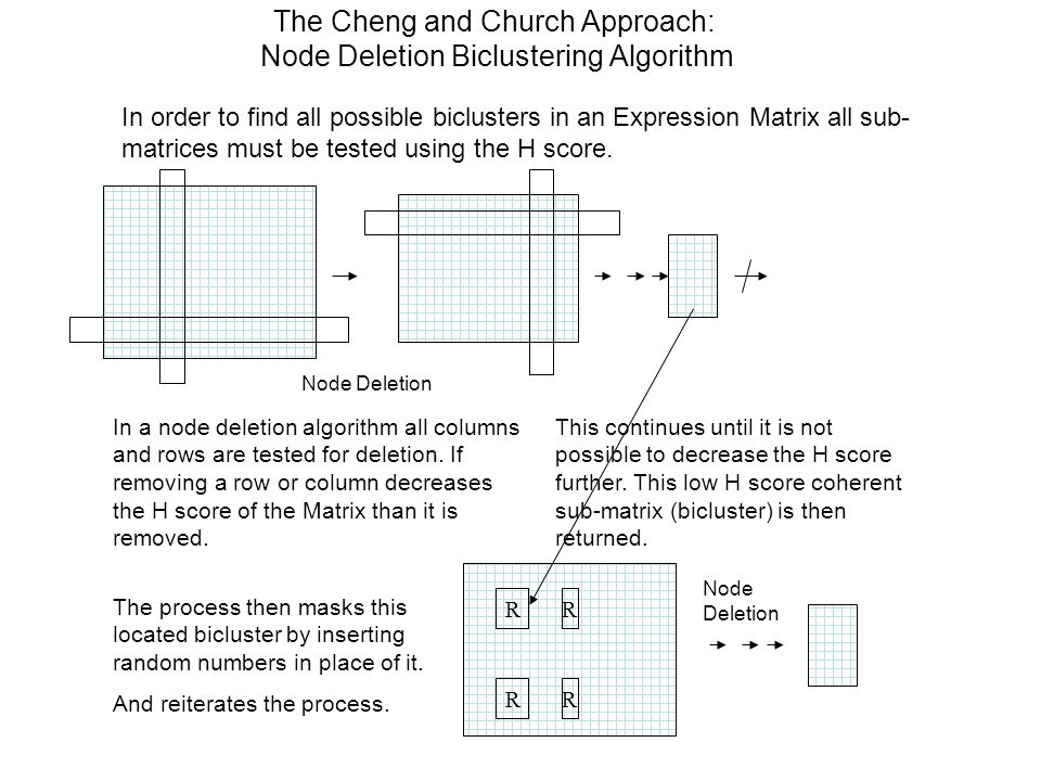The Cheng and Church Approach: Node Deletion Biclustering Algorithm