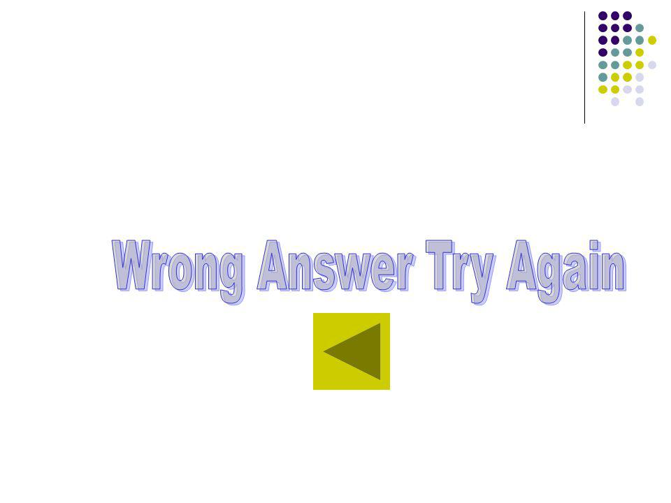 Wrong Answer Try Again