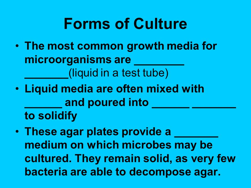 Forms of Culture The most common growth media for microorganisms are ________ _______(liquid in a test tube)