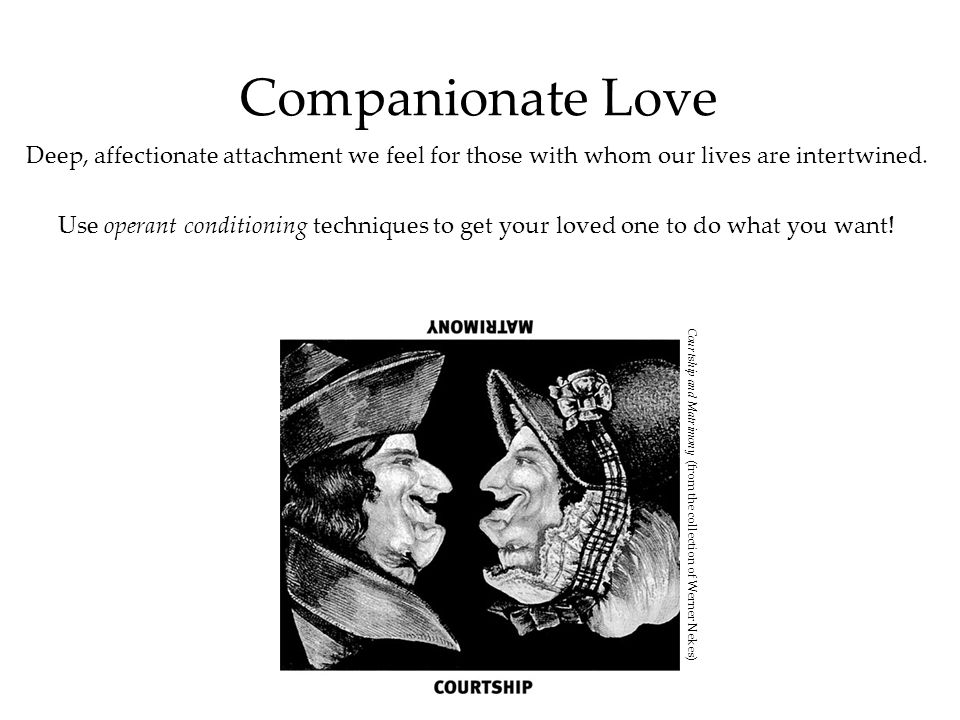 Companionate Love Deep, affectionate attachment we feel for those with whom our lives are intertwined.