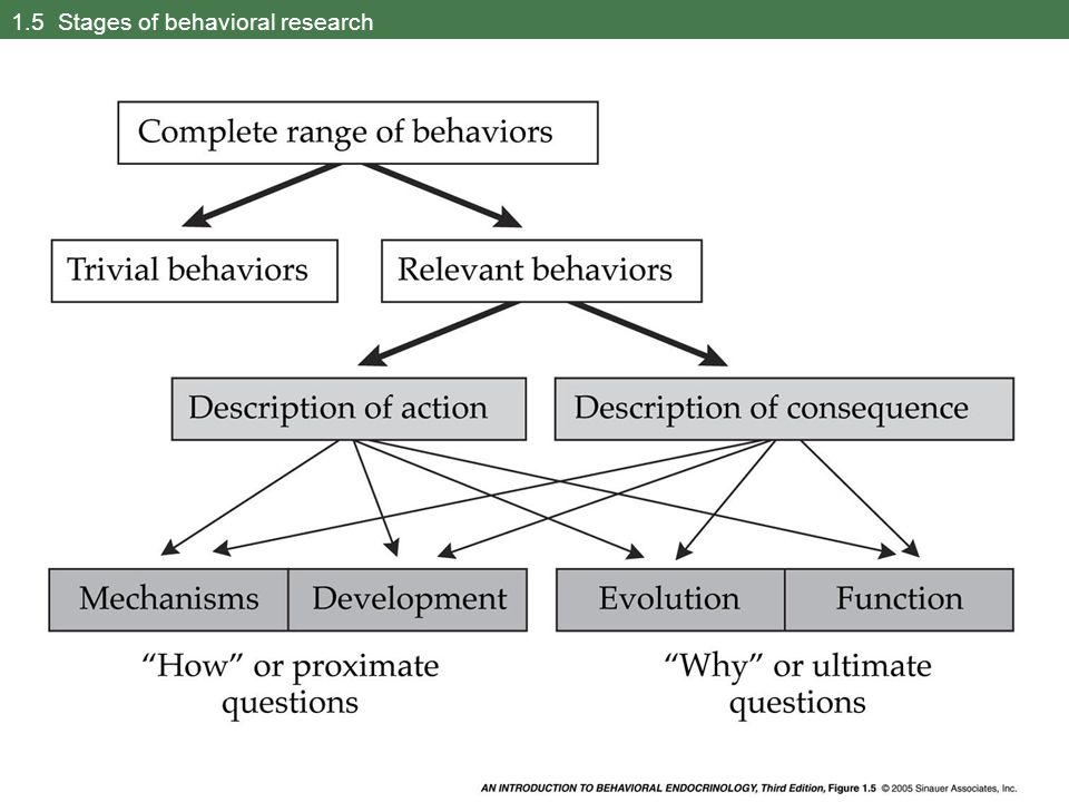 1.5 Stages of behavioral research