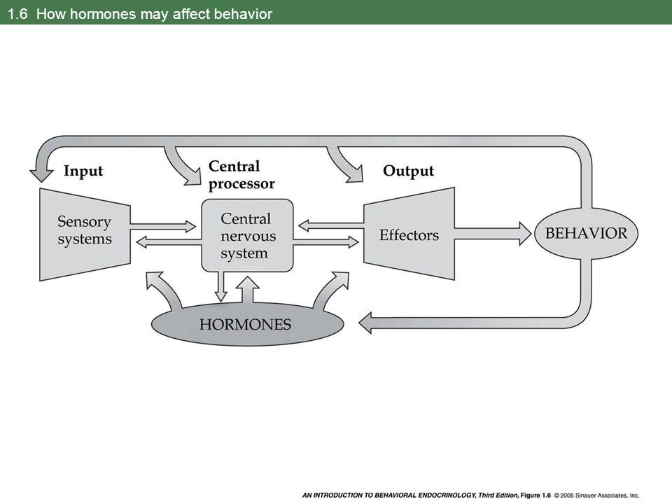 1.6 How hormones may affect behavior