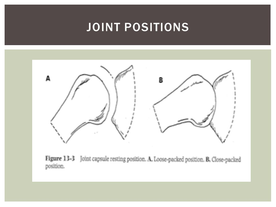 Joint Positions