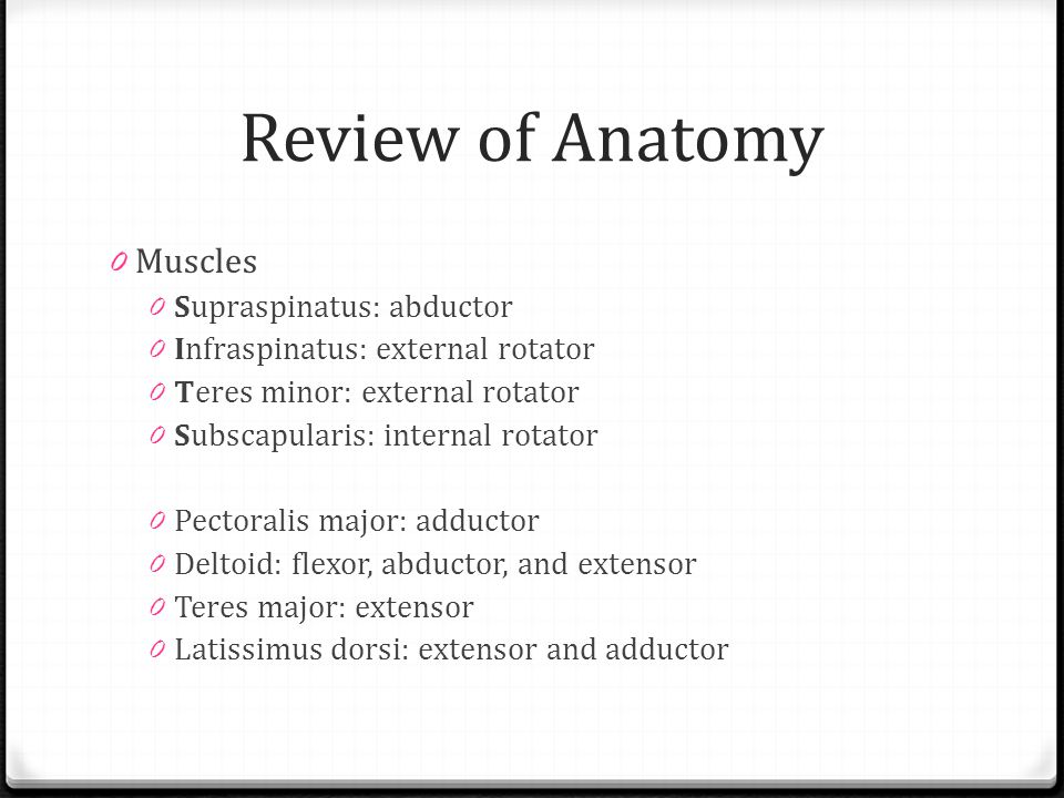 Review of Anatomy Muscles Supraspinatus: abductor