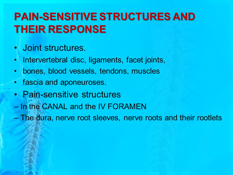 PAIN-SENSITIVE STRUCTURES AND THEIR RESPONSE