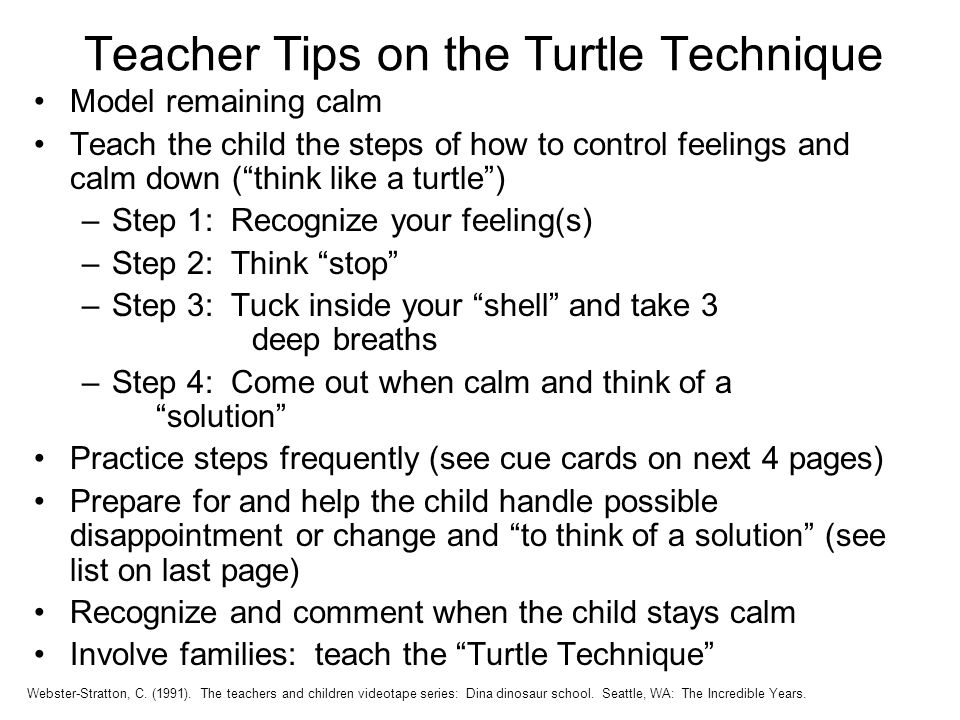 Teacher Tips on the Turtle Technique