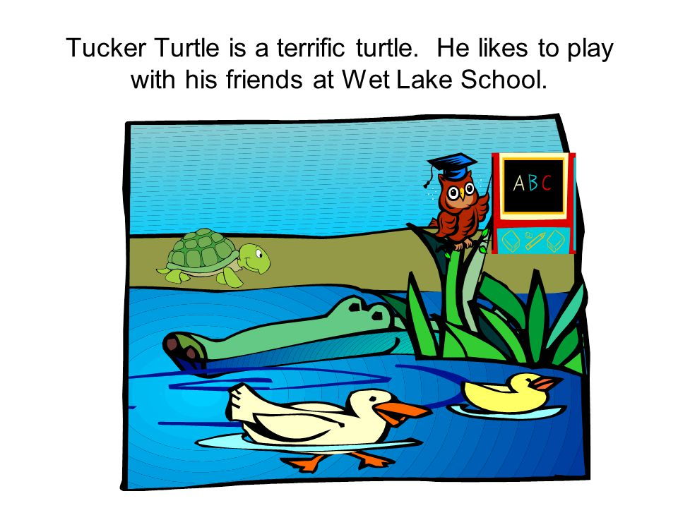 Tucker Turtle is a terrific turtle